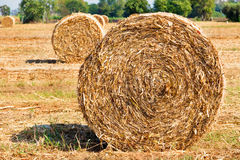Harvested field with straw bales. In autumn Stock Photography