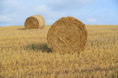 Harvested field with straw bales in autumn Royalty Free Stock Photography