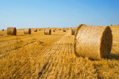Harvested field with straw bales Royalty Free Stock Photo