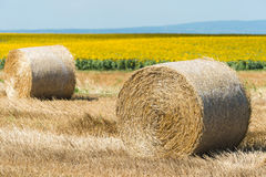 Harvested field with straw bales Stock Photos