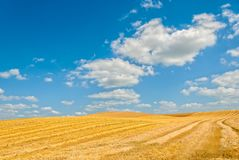Harvested field Royalty Free Stock Photos