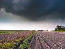 Harvested Field under Stormy Sky Royalty Free Stock Photo