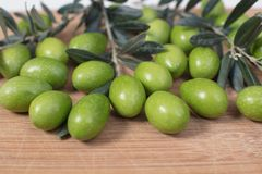 Harvested fresh olives with young olive twigs on wooden backgrou. Nd  with space for text Royalty Free Stock Photo