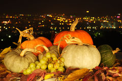 Harvested fresh vegetables and fruits at night. Against city lights background. Decoration for Thaksgiving Day Stock Photos