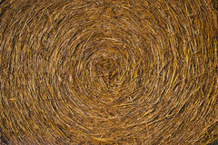 Harvested hay Stock Photography