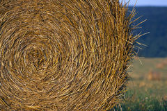 Harvested hay Stock Photos