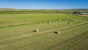 Harvested Hay in Farmland Field Royalty Free Stock Photo