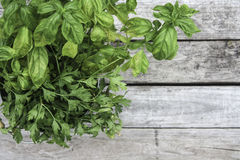 Harvested Herbs Background Royalty Free Stock Photography