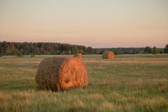 Harvested hilly wheat field with straw bale.  Stock Image