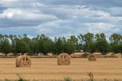 Harvested land with bales of hay with smileys stock images