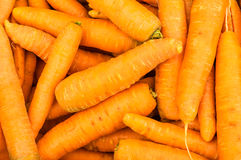 Harvested orange carrots on display Stock Photography