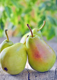 Harvested pears on old wooden Royalty Free Stock Photo