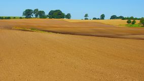 Harvested per acre or field Stock Image