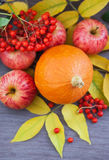 Harvested pumpkin, apples, ashberry and fall leaves around Royalty Free Stock Images