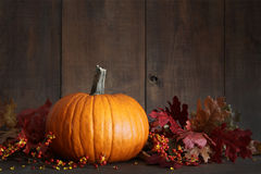 Harvested pumpkin and berries on wood Stock Photo