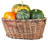 Harvested pumpkins in  basket Royalty Free Stock Photo