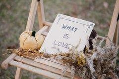 Harvested pumpkins decorate Stock Photo