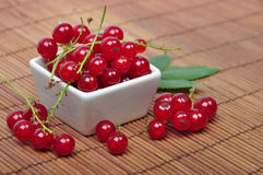 Harvested red currant. Berries in a small bowl closeup Stock Photos