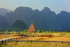 Harvested rice field surrounded by rock formations in Vang Vieng Royalty Free Stock Images