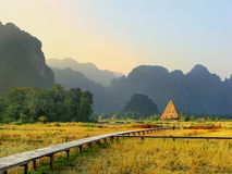 Harvested rice field surrounded by rock formations in Vang Vieng Stock Photos