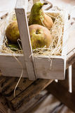 Harvested ripe conference pears on straw in vintage wood box, by window, natural soft light. Farming, closeup Royalty Free Stock Photos