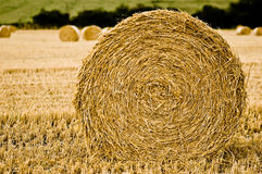 Harvested Straw Bale Royalty Free Stock Photography