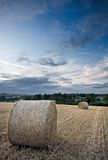 Harvested straw bales under a sunset sky. Rolled bales of harvested straw in an English field under a summer sunset sky Stock Image
