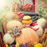 Harvested vegetables and fruits  in wooden cart Royalty Free Stock Photo