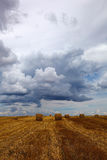 Harvested wheat field with hay rolls. Royalty Free Stock Photo
