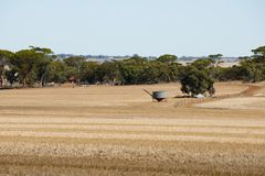 Harvested Wheat Fields. Western Australia Royalty Free Stock Images
