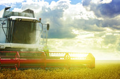 Harvester. On surise field. Photomontage Royalty Free Stock Image