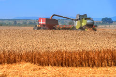 harvester Foto de archivo