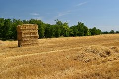 Harvester agriculture machine harvesting golden ripe corn field. Tractor - hay and straw,  traditional summer background with an i Royalty Free Stock Photos