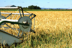 Harvester and barley Stock Images