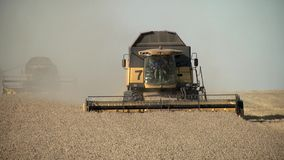 Harvester collects ripe wheat in the field stock footage