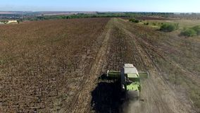 Harvester Collects Sunflowers. Aerial Survey stock footage