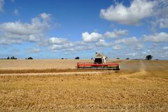 Harvester combine Stock Photo