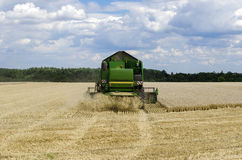 Harvester. Combine cut corn on the field Royalty Free Stock Photography