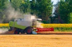 Harvester combine harvesting wheat Stock Photo