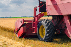 Harvester combine harvesting wheat in summer Stock Images