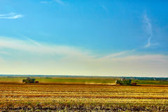 Harvester combine harvesting wheat on summer day Royalty Free Stock Photos