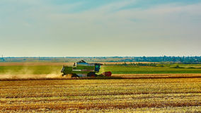 Harvester combine harvesting wheat on summer day Stock Photo
