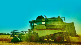 Harvester combine harvesting wheat on summer day Stock Photos