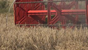 Harvester combine work in cereal crop field at summertime. 4K stock footage