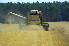 Harvester corn earning time. Corn earning time in summer with combine harvester royalty free stock photos