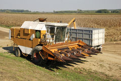 Harvester in the corn field Stock Images