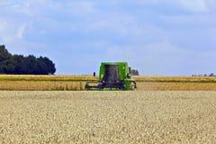 Harvester in corn fields Stock Photos