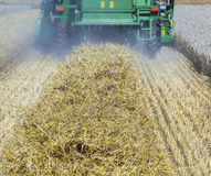 Harvester in corn fields Stock Image