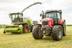 Harvester cutting field, loading Silage into a Tractor Trailer Stock Photography