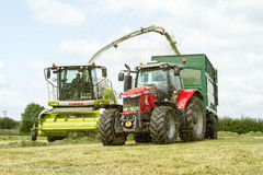 Harvester cutting field, loading Silage into a Tractor Trailer Royalty Free Stock Photos